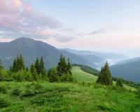 landscape 009