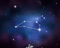 zodiac 010