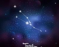 zodiac 013