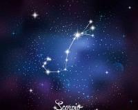 zodiac 015