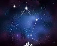 zodiac 019
